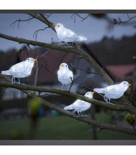 Décoration de Noël exterieur, 5 oiseaux lumineux à LED