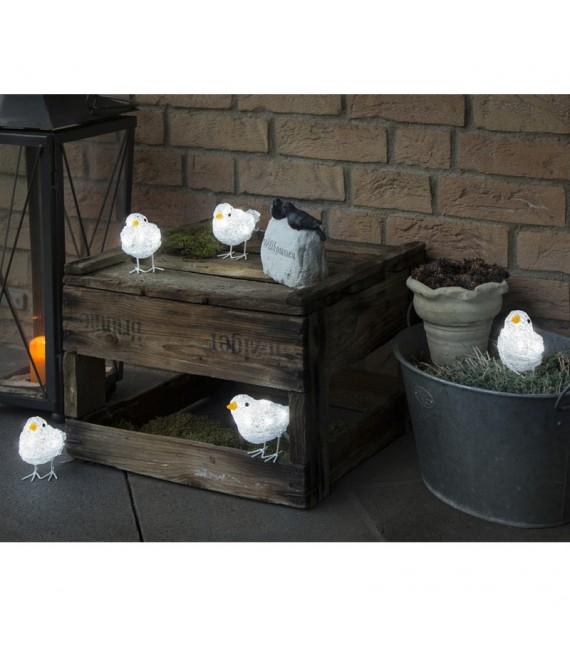 d coration de no l exterieur 5 oiseaux lumineux led. Black Bedroom Furniture Sets. Home Design Ideas