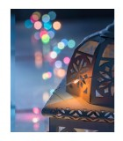 Guirlande lumineuse avec changement de couleur, 50 diodes LED