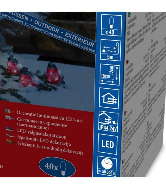 Décoration de Noël exterieur, 5 rouge-gorge à LED