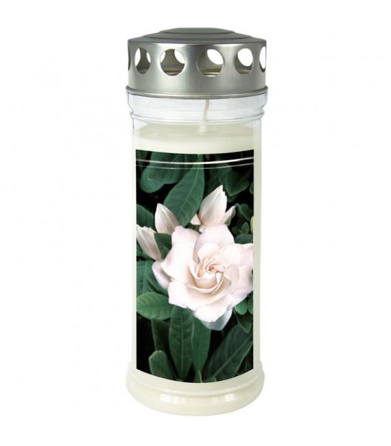 Bougie funéraire Gardenia, 21,5 cm